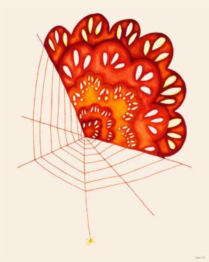 クモの職人