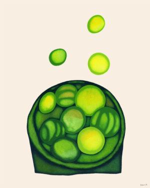 緑色のドロップ