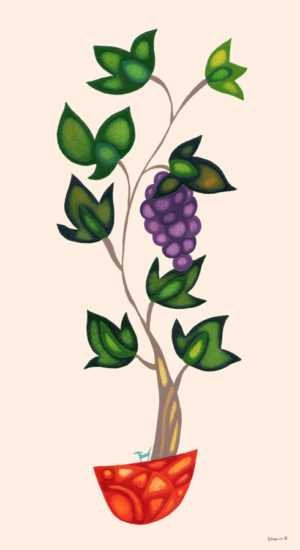 葡萄の木の下で